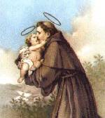St. Anthony of Padua 19