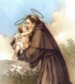 St. Anthony of Padua 19