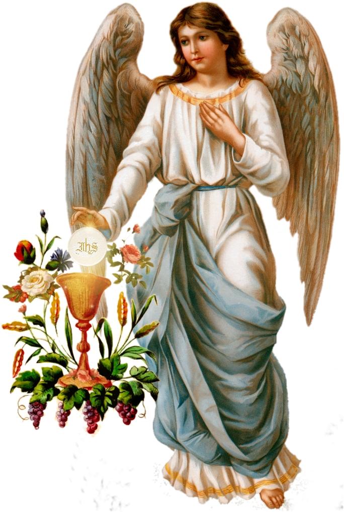 fatima angel